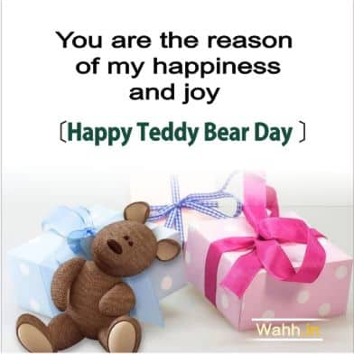 Happy Teddy Day Quotes for Husband In Hindi