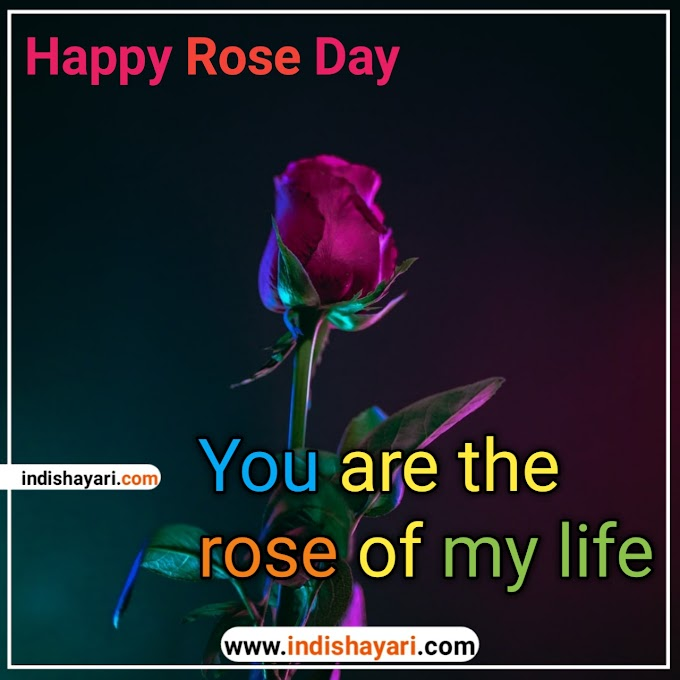 Happy Rose Day 2021: whishes sms quotes for whatsapp Facebook Instagram status