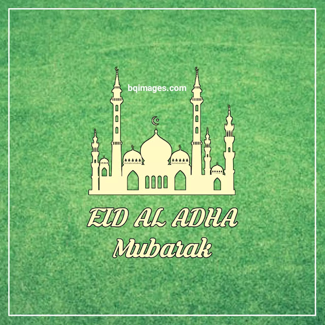 Eid Al Adha Mubarak DP