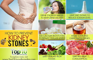Kidney Stones And Diet
