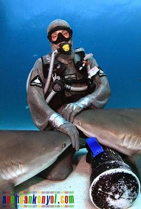 Wow Cewek Ini Bisa Hipnotis Ikan Hiu