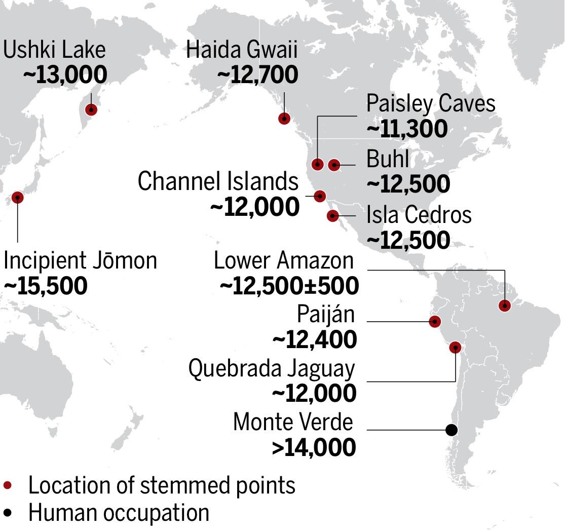Paleoantropología hoy: La Cultura en América