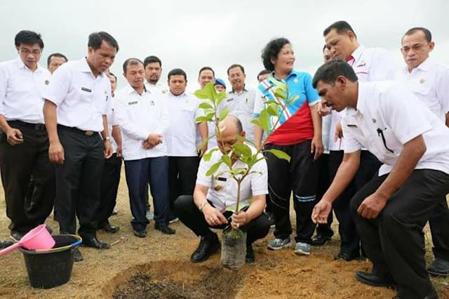 Bupati Taput Canangkan  Penanaman 4500 bibit Pohon berbuah dan Berbunga di 80 Sekolah