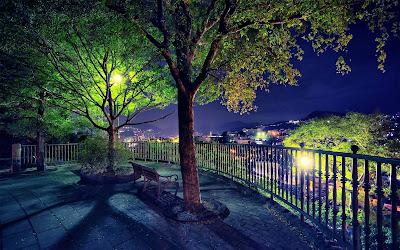 Parque precioso de noche con luces y ciudad de fondo