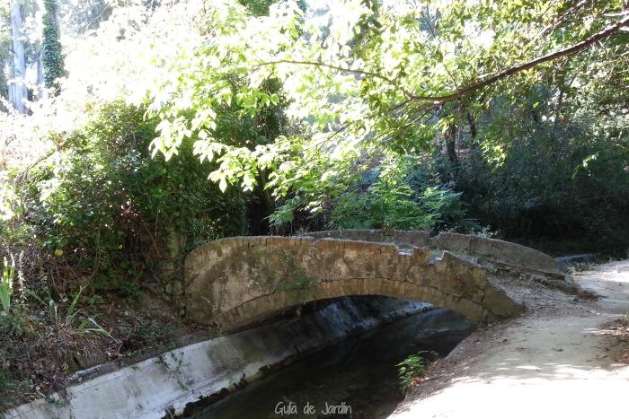Puente de piedra para cruzar el canal