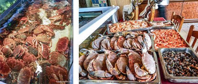 Vitrine de sapateiras e outros frutos do mar na Marisqueira Costa Nova, em Ílhavo, Portugal