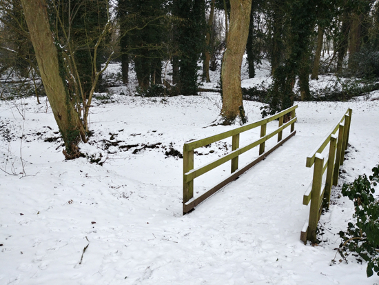 Photograph of Gobions Wood and Gobions Pond taken in the snow on March 1, 2018. Image by David Brewer and released under Creative Commons BY-NC-SA 4.0.