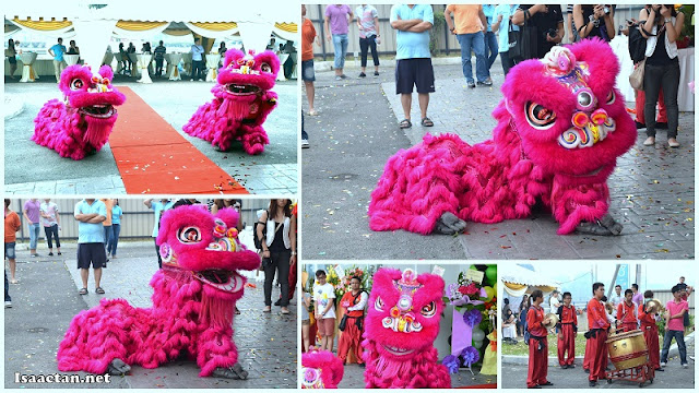 Lion dance for all to enjoy