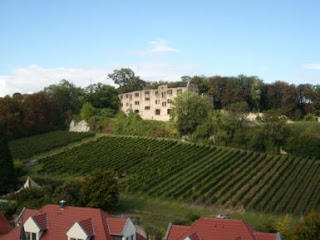 Dr. Heyden winery