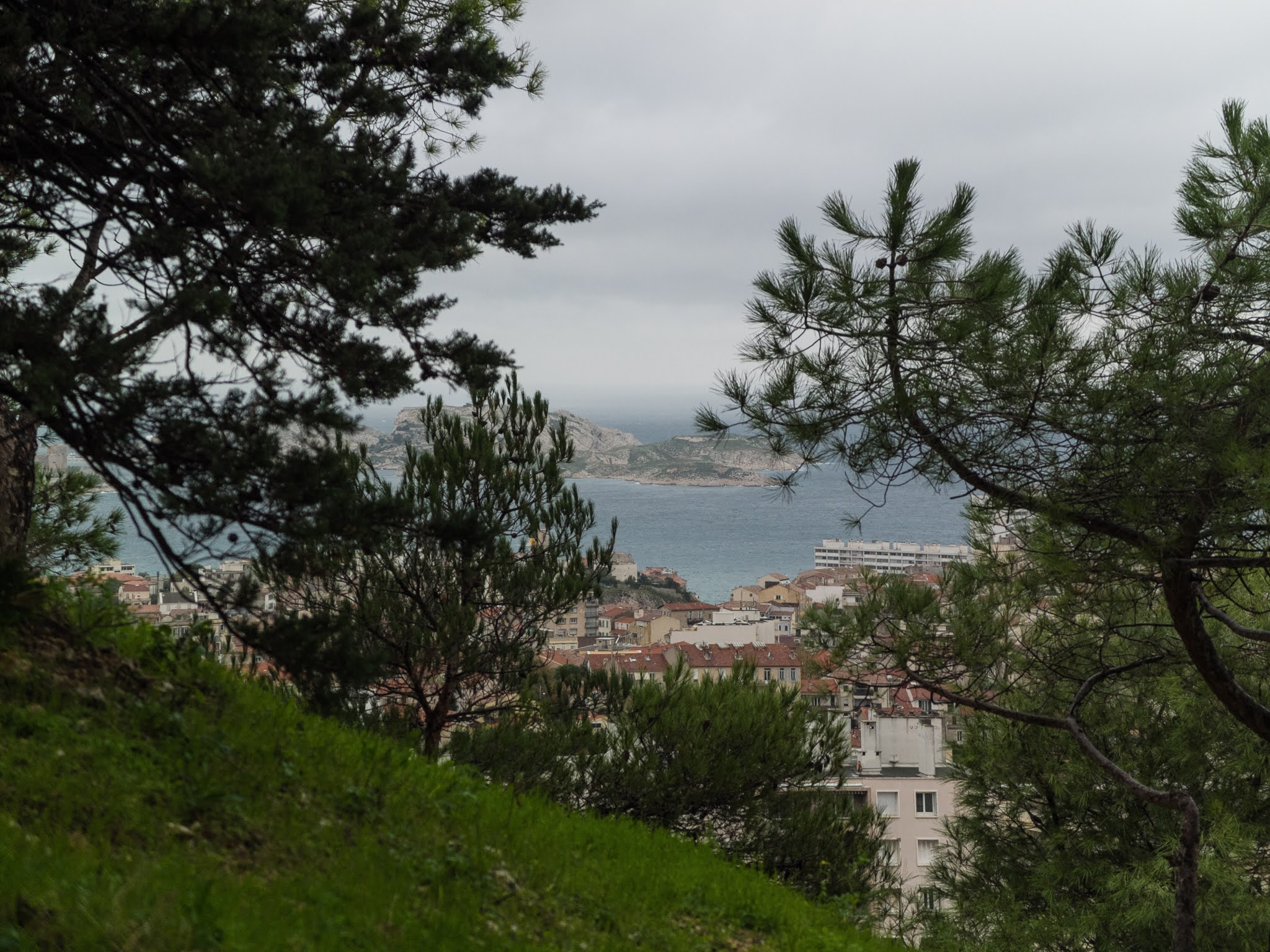 Looking towards the Frioul archipelago through pine trees on La Garde hill.