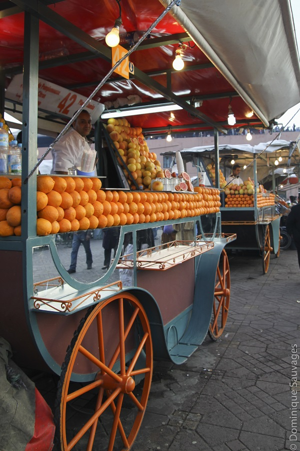 marrakech_mamounia_oranges