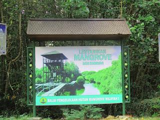 Inilah Tempat Wisata Searah Mangrove Bali Dari Bandara Ngurah Rai
