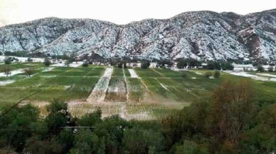 Lluvias y granizo afectan a 50 familias en Tupiza