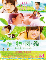 Evergreen Love(2016)