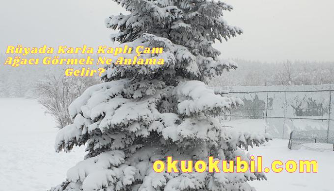Rüyada Karla Kaplı Çam Ağacı Görmek Ne Anlama Gelir?