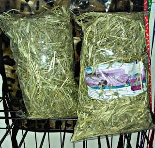 Makanan kelinci kecil rumput kering