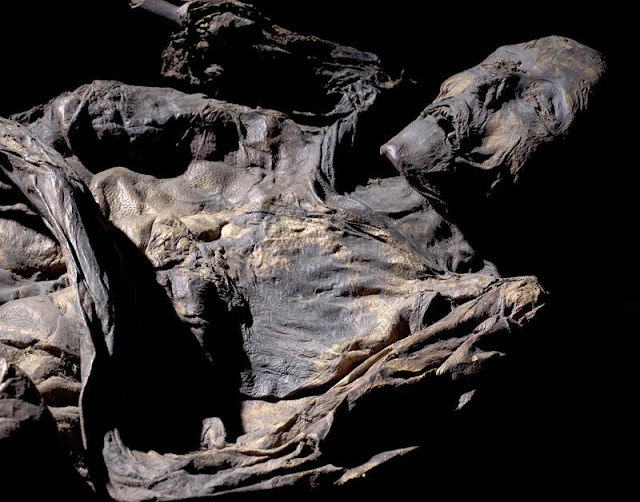 New method reveals the secrets of bog bodies