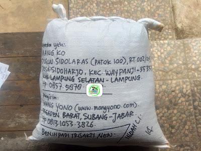 Benih padi yang dibeli    MANG KO Lamsel, Lampung (Setelah packing karung ).