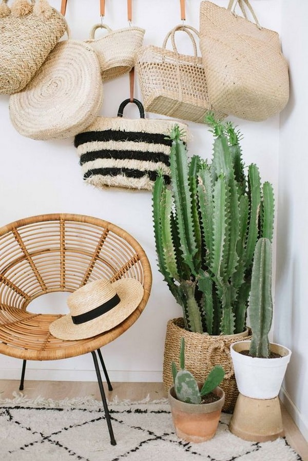 Original Ideas For Decorating Interiors With Cactus 2