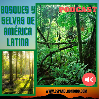 Bosques y selvas de América Latina