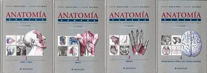 Rouviere anatomia descargar gratis