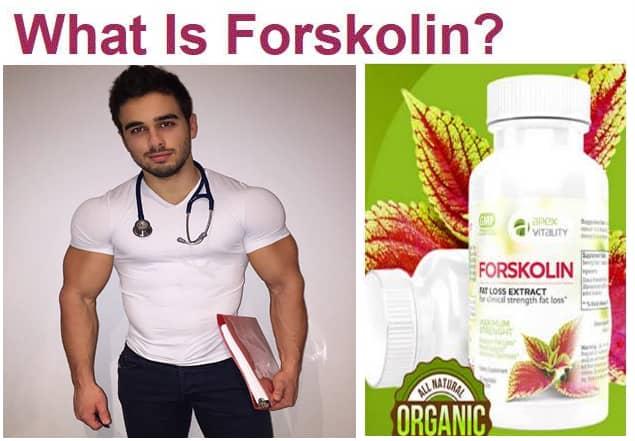 Forskolin fat loss