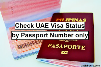 visa check by passport number