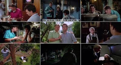 Capturas: No matarás... al vecino (1989) The Burbs