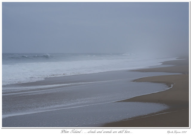 Plum Island: ... clouds and sounds are still here...