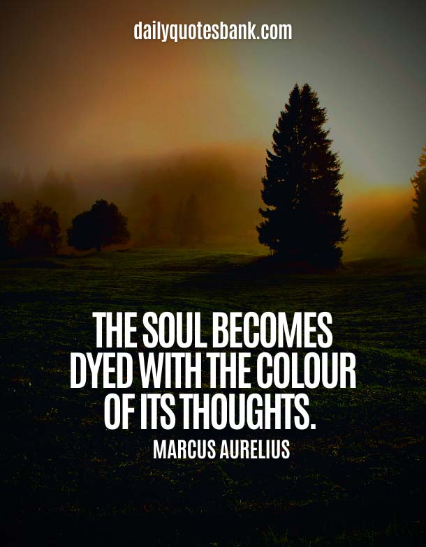 Best Beautiful Soul Quotes and Sayings