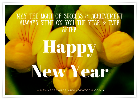light, success, Achievement, shine, Yellow, Flower, New Year, Card,