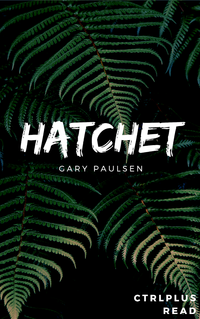 Hatchet Summary and Review By Gary Paulsen