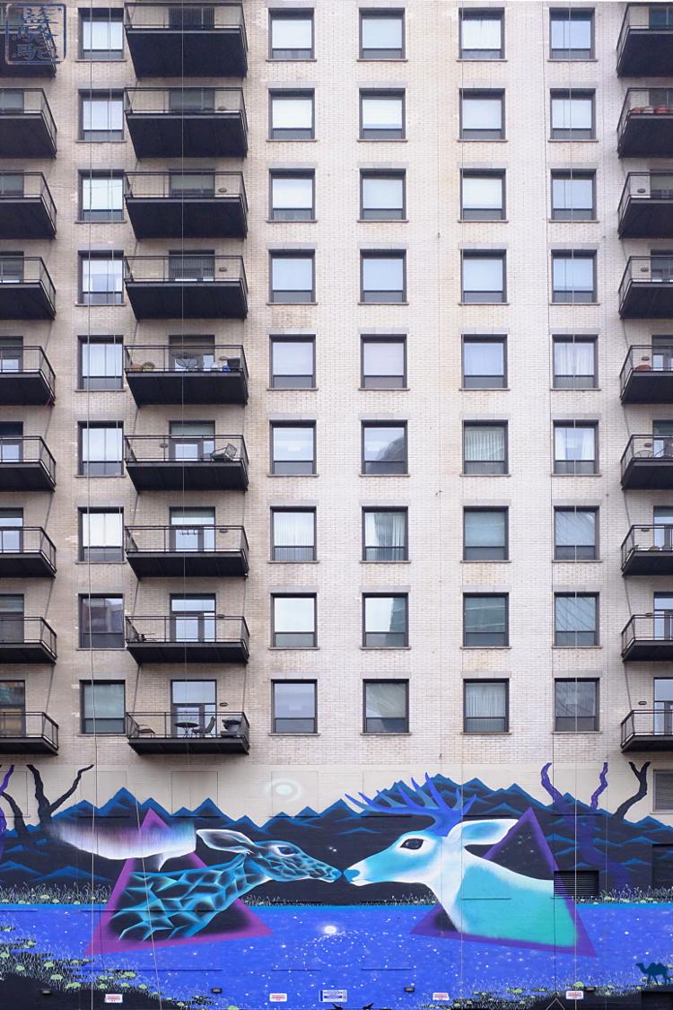 Le Chameau Bleu - Voyage à Chicago  aux USA - Street Art