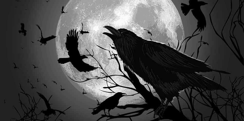 A, mitoloji, Çeroki mitolojisi, Alaycı kuzgun, Kızılderili mitolojisi, Mitolojide kuzgun, Amerikan mitolojisi,