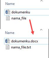 cara menampilkan ekstensi file