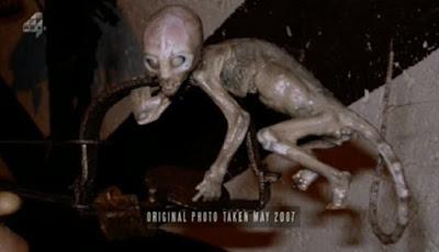 Misteri Bayi Alien di Perangkap Tikus, Ini yang Fakta Sebenarnya
