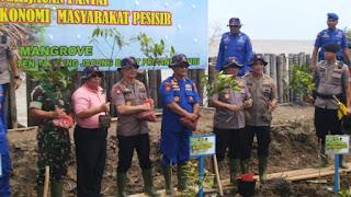 Kapolda Jambi Bersama Bupati Tanjung Jabung Barat Tanam Pohon Mangrove