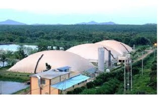 Pembangkit listrik biomassa
