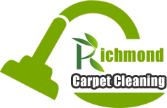 Best Carpet Cleaning Services Ever
