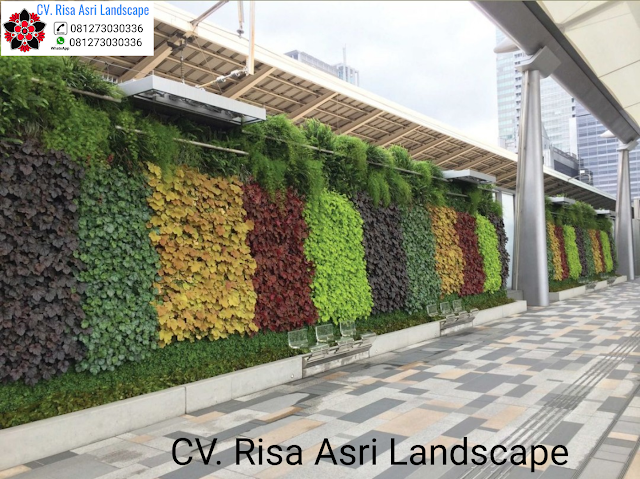 Pembuatan Taman vertikal green wall ( VERTICAL GARDEN )