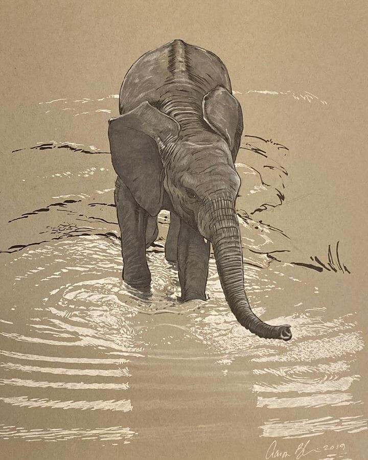06-Baby-Elephant-in-water-Aaron-Blaise-www-designstack-co