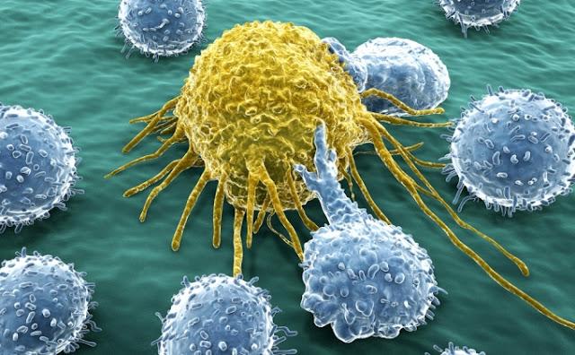 مسببات السرطان