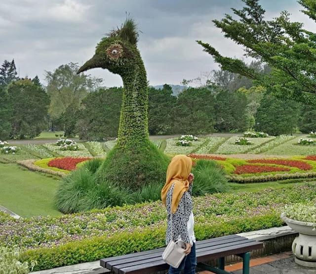 daftar wisata cianjur 2020, daftar wisata cianjur terbaru 2020, daftar wisata cianjur hits 2020, daftar wisata cianjur populer 2020, daftar wisata cianjur jawa barat