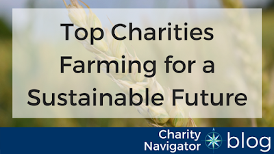Charity Navigator Shares Charities Farming for a Sustainable Future