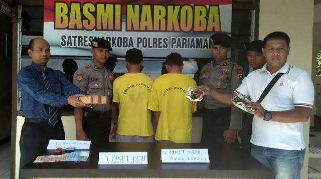 Bawa Ganja Kiloan, Pegawai Honor Dishub Pariaman Dibekuk Polisi