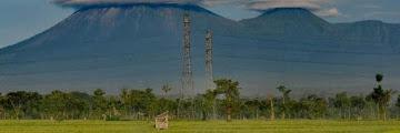 Estimasi Biaya Transportasi dan Jalur Pendakian Gunung Semeru