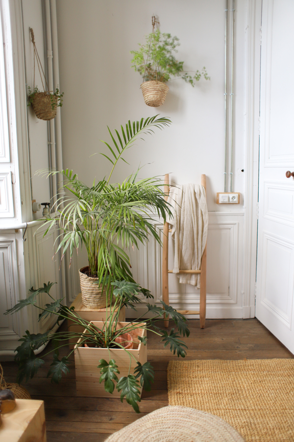 Green With Envy- design addict mom #plants