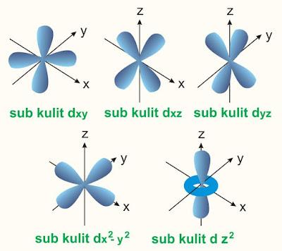 bentuk orbital d tiga dimensi