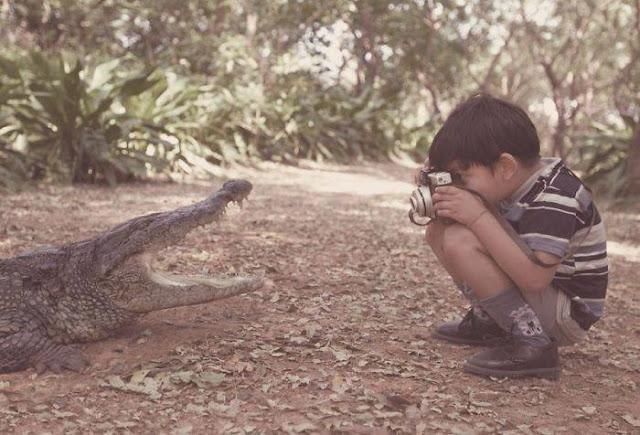 Children Boy Kid Crazy Photographers take pics of Crocodile