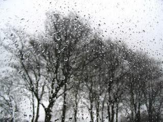 الشتاء